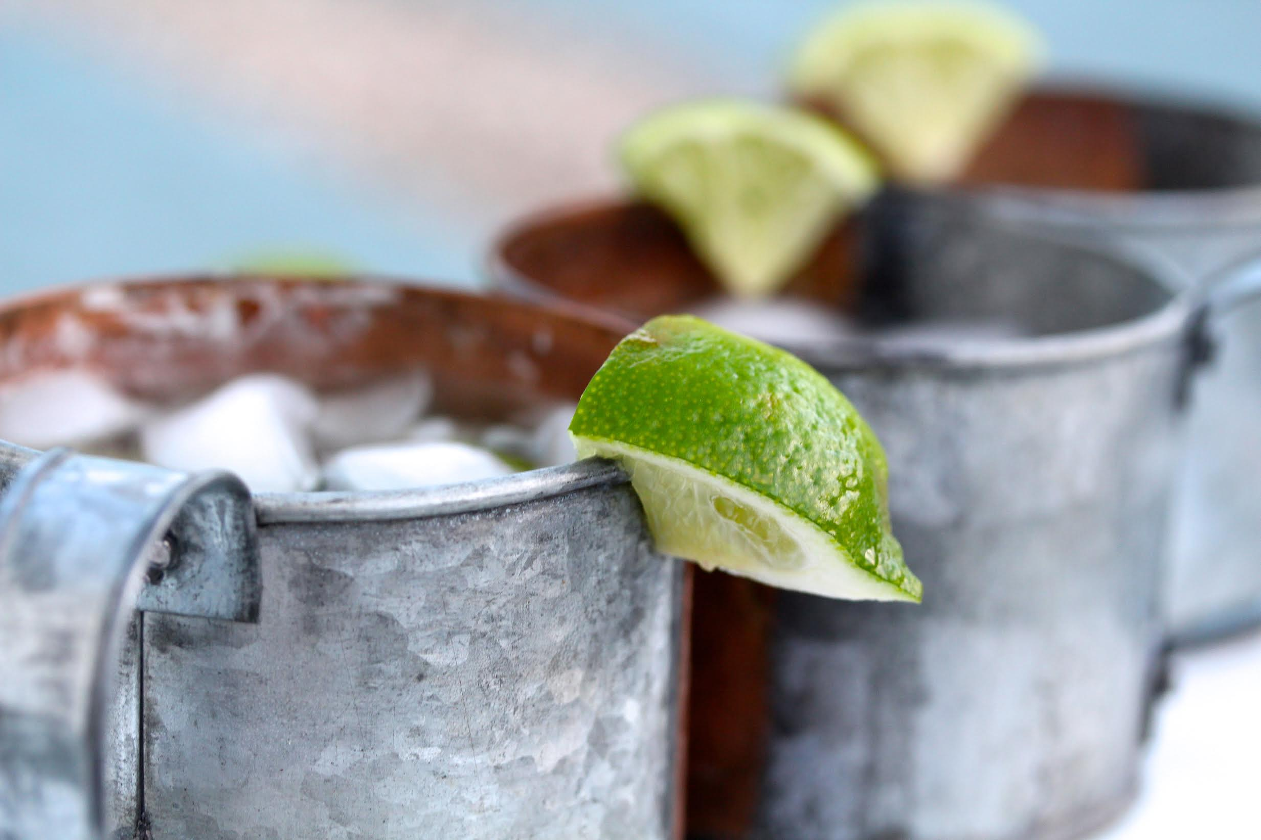 Moscow Mule Recipe | Rockwell